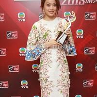 Summer 2014 women's big star Fan Bingbing same style horn sleeve dress in silk dress irregular