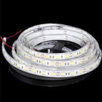 free shipping 50m 10pcs/lot white IP68 DC12V 60leds/m 5m waterproof SMD5050 flexible led ribbbon strip light for christmas