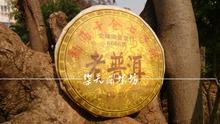 Promotion!5 years old 357g Chinese yunnan Puerh tea puer tea pu er the China naturally organic matcha health care tea
