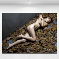 canvas wall picture Nude Sexy  Female Lady Woman Modern Wall Decor Art Oil Painting On Canvas decoration home modern