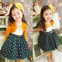 Retail 2014 autumn baby girls dress casual kids clothes cotton kids dress meninas vestir  vestidos de menina