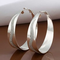 E463 new design Hot Sale!!Free Shipping 925 sterling silver Earring,Fashion 925 silver Jewelry New Style Earrings