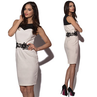 New 2014 Summer Fashion Embroidery Lace Patchwork Plus Size Women Evening Party Dress Elegant Office Bandage Dresses YK021