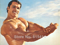 "010 Arnold Schwarzenegger - Terminator Great Muscle Player 18""x14"" Poster"