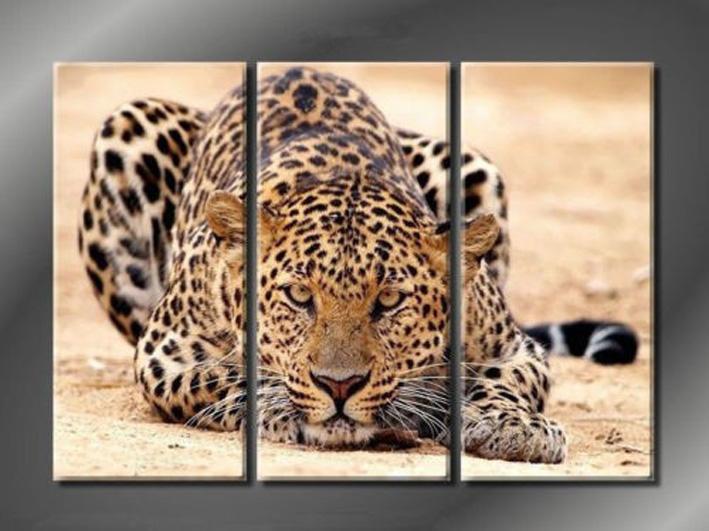 online get cheap leopard bedroom decor alibaba group
