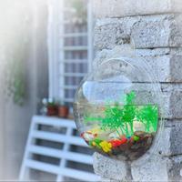 2014 new fashion  design transparent acrylic wall-mounted fish tank aquarium mini wall aquarium Size S 22.5*22.5cm