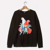 Parrot sweater hedging long-sleeved cotton sport coat raglan sleeve sweater men