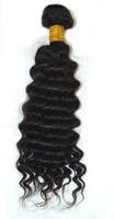 Queen Rose hair:100% burmese Virgin Human Hair Extensions Deep Wave Curly Weft  Weave Hair free shipping