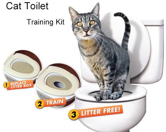 kit toilette pour chat images