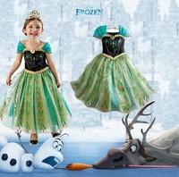 2014 new Frozen Girl Elsa & Anna Princess children dress snow Adventure girls dress size 100 110 120 130 140
