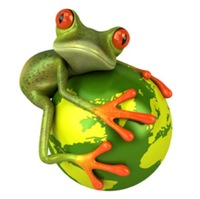 5PCS/Set/Lot ETIE YTQW019 3D-vision Waterproof Funny Frog-earth/globe Decal Sticker for Car/Wall/Glass/Tablet/Cabinet 6cm X 8cm