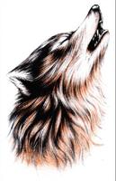 Free shipping art designs wolf  Waterproof tattoo Tattoo big size Temporary arm tattoo stickers