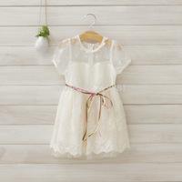 Wholesale ! Girls lace gauze white dress , tutu dresses for girls ,5pcs/lot   DMJ20