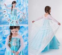 2014 Frozen Elsa Dress High Quality Frozen Party Dresses Girl Frozen Dress Vestidos De Menina Size100-140 5pcs/Lot Free Shipping