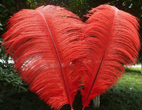 High Quality ! 12-14'' (30-35cm) Red Ostrich Feathers Wedding Decoration FREE SHIPPING