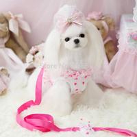 Fashion Summer New  fluorescent lollipop with chest straps pet clothes dog pet collar pet dog supplies