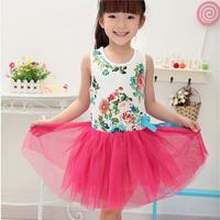 Hot Baby Kids Girls Flowers Princess Tulle Tutu Dress Child Bowknot Party Dress Droshipping Freeshipping