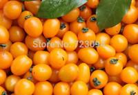 Wholesale 1pack 20pcs Vegetable Seeds Various Huge Tree Sweet Edible Tomato Fruit Seeds Home Garden Plants JE187