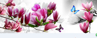 New 2014 Needlework DIY Diamond Painting Cross Stitch Sewing Knitting Needles Diamond Embroidery Orchid and butterfly