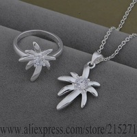 SY-AS540 925 sterling silver Jewelry Sets Ring 536 + Necklace 860 /bfgajwna fblanssa
