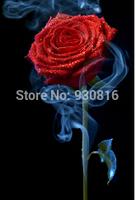 New 2014 Needlework DIY Diamond Painting Cross Stitch Sewing Knitting Needles Diamond Embroidery smoked red rose