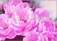 New 2014 Needlework DIY Diamond Painting Cross Stitch Sewing Knitting Needles Diamond Embroidery Chrysanthemum