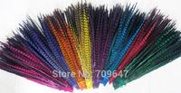 "Wholesale!200Pcs/Lot!14-16""(35-40CM) Dyed Ringneck Pheasant Tail feathers ,natural ringneck Tails,9Colours available"