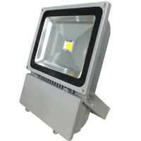 Free shipping AC230V/240V /110V/220V led flood light 100w Warm white/Cool white/RGB Outdoor waterproof IP65 10watt led reflector