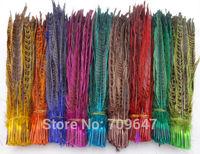 "Wholesale!200Pcs/Lot/colour,10-12""(25-30cm)Multicolor Hen Ringneck Pheasant Tail Feathers freeshipping"