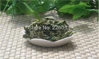 Free Shipping 500g Mulberry Leaf Tea,Loose Tea Leaves, sang ye, Lower blood pressure Reduce blood lipids  Reduce blood sugar
