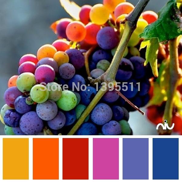 цены на Карликовое дерево Flower seeds princess 30 /, DIY GH57j в интернет-магазинах