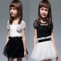 Baby Kid Girls Princess Formal Party Tutu Lace Flower Gown Dress One-Piece Suit Free Shipping