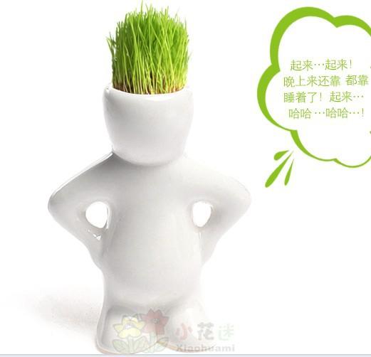 Min. Order $10.white man grass doll,Green grass planting Fresh air!Indoor office mini plant pot Mini Bonsai(China (Mainland))