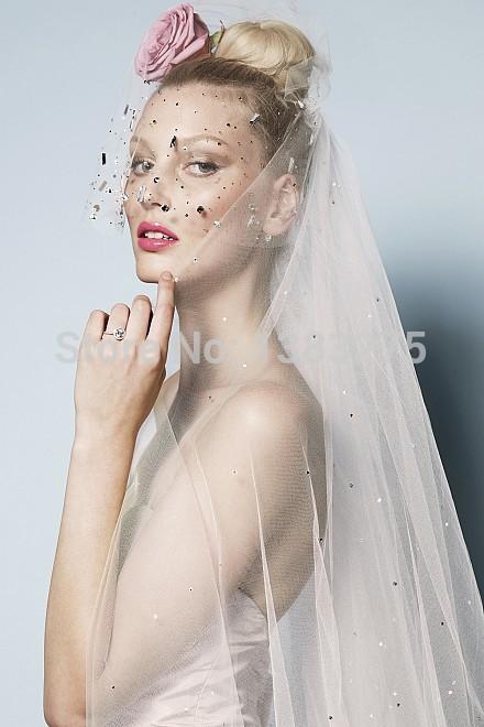 2014 perspective sexy lace trailing bitter fleabane bitter fleabane skirt wedding dresses Fashion long-sleeved led a word(China (Mainland))