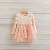 2014 Girls lace gauze tutu dress , kids dresses for girls , children's dresses , 5pcs/lot   LXJ34