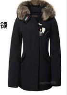 Chromophous woolrich Women muleshoe bags medium-long down coat 2012 down coat outerwear coats#