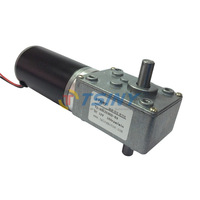 12V Double shaft electric dc worm gear box reduction motor dc 160 RPM