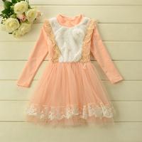 2014 New,girls lace princess dress,children autumn dress,long sleeve,brooch,embroidery,2 colors,5 pcs / lot,wholesale,1714