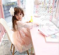 NEW ! 2014 kids sweet lace princess dress ,dress girl , kids clothes girls , 5pcs/lot   HJ09
