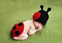 Hand Crochet Ladybug Set Baby Photography Props Newborn Ladybug Hat and Cover Set Infant Animal Beanie Hats 0-12 month