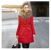 Raccoon in heavy hair get long cotton-padded clothes With thick cotton-padded jacket winter jacket