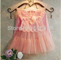 New 2014 autumn children clothing baby girls dress long-sleeve kids clothes girls princess dress Free shipping