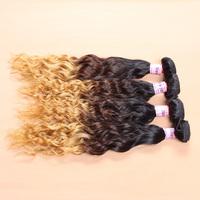 wholesale brazilian water wave virgin hair 10pcs/lot Grade 8a ombre virgin hair mix colors human soft hair bundles free UPS/DHL