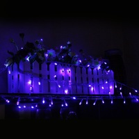 32.8Ft Blue Color100 LED String Light Fairy Light for Xmas, Birthday Party, Weddings and other Celebrations