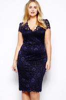 New 2014 Sexy Dress Navy Blue Scalloped V-neck Lace Dress Novelty Mesh Midi Dress E6415P Large Plus Size XXL XXXL Women Clothing