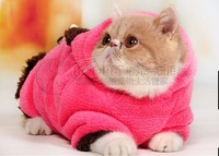 Autumn and winter clothes to keep warm cat Garfield coat clothes