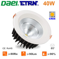 Daei ETRN Brand 2014 new 40W LED Downlights LED Recessed lights LED Bulbs White CREE COB Free Shipping