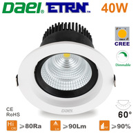 Daei ETRN Brand 2014 new 40W Dimmable LED Downlights LED Recessed lights LED Bulbs White CREE COB  Free Shipping