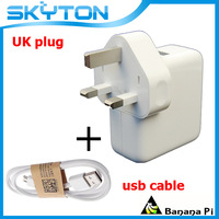 Hight Quality UK10W 2.1A USB  Charger AC Power Adapter for Banana Pi  UK Plug  Free Shipping