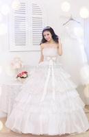 The bride wedding dresses lace Bra 2014 new wedding dress was thin sweet princess vestido de noiva manga longa 415